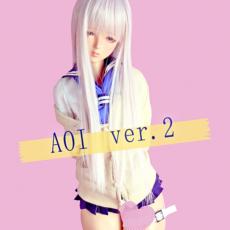 d_aoi_ss_ver2_001